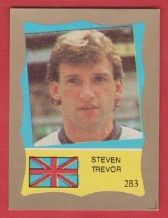 England Dave Watson Everton **ERROR STICKER**